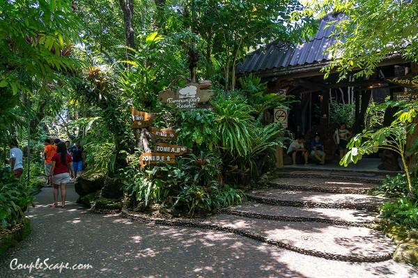 ร้านตำนานป่า