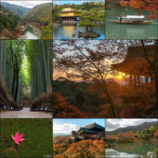 Kyoto Cover