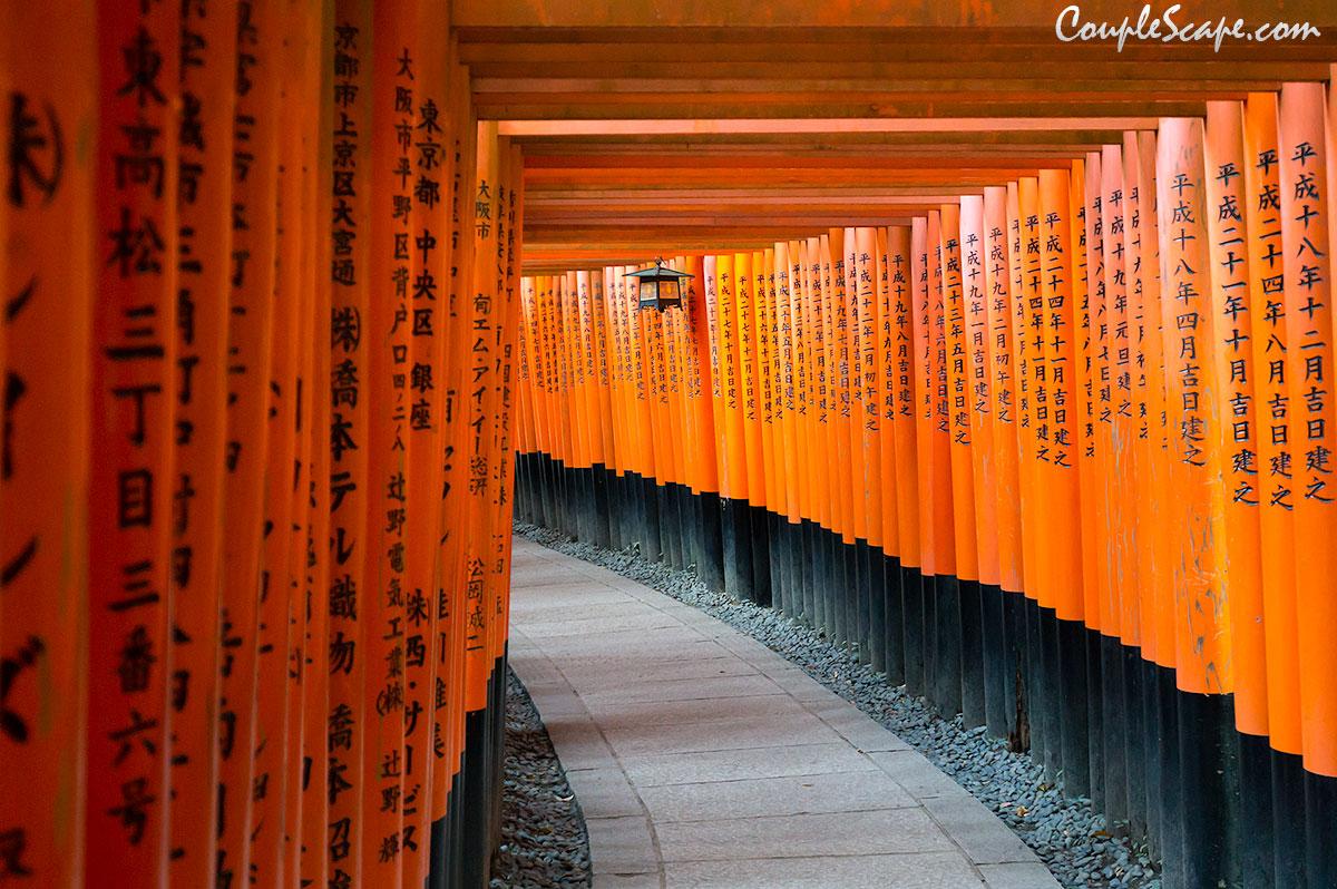 เที่ยวคันไซ ตอนที่ 7 เที่ยวศาลจิ้งจอก Fushimi Inari และ Osaka Aquarium Kaiyukan