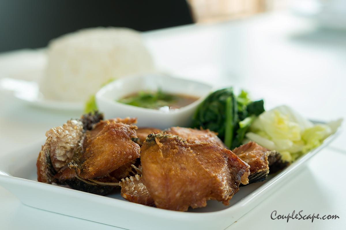 แม่ลาคิทเช่น  ร้านอาหารย่านเมืองทอง กับอาหารไทยสดอร่อย