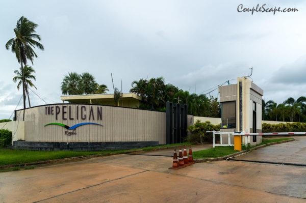 Pelican Krabi